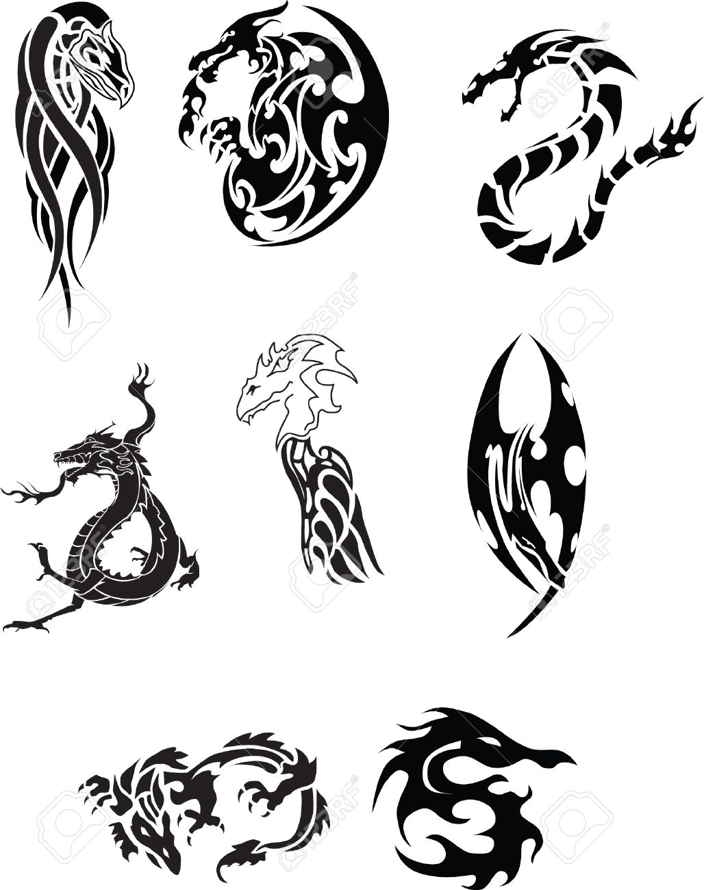 Collection of Dragon Tattoo Stock Vector - 5260756
