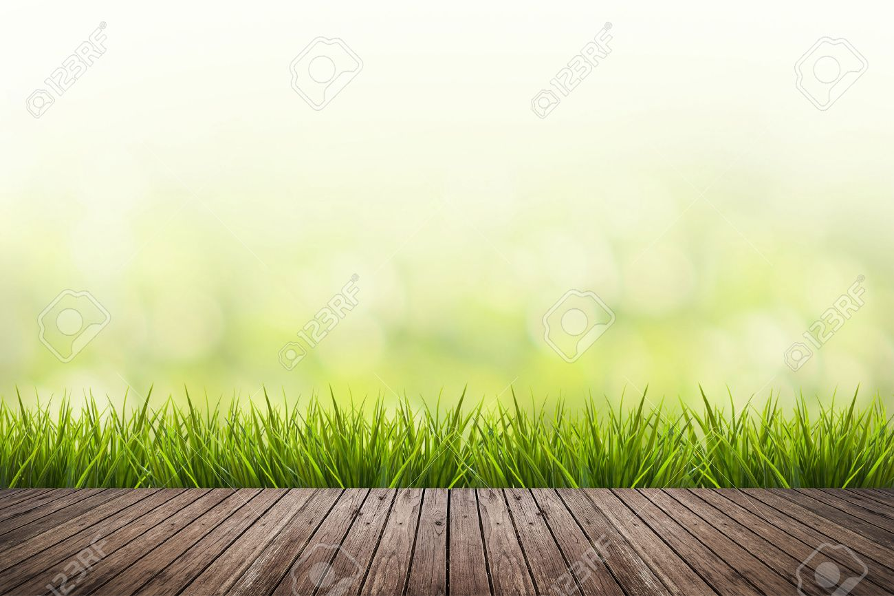 Fresh spring grass with green nature blurred background and wood floor - 41731626