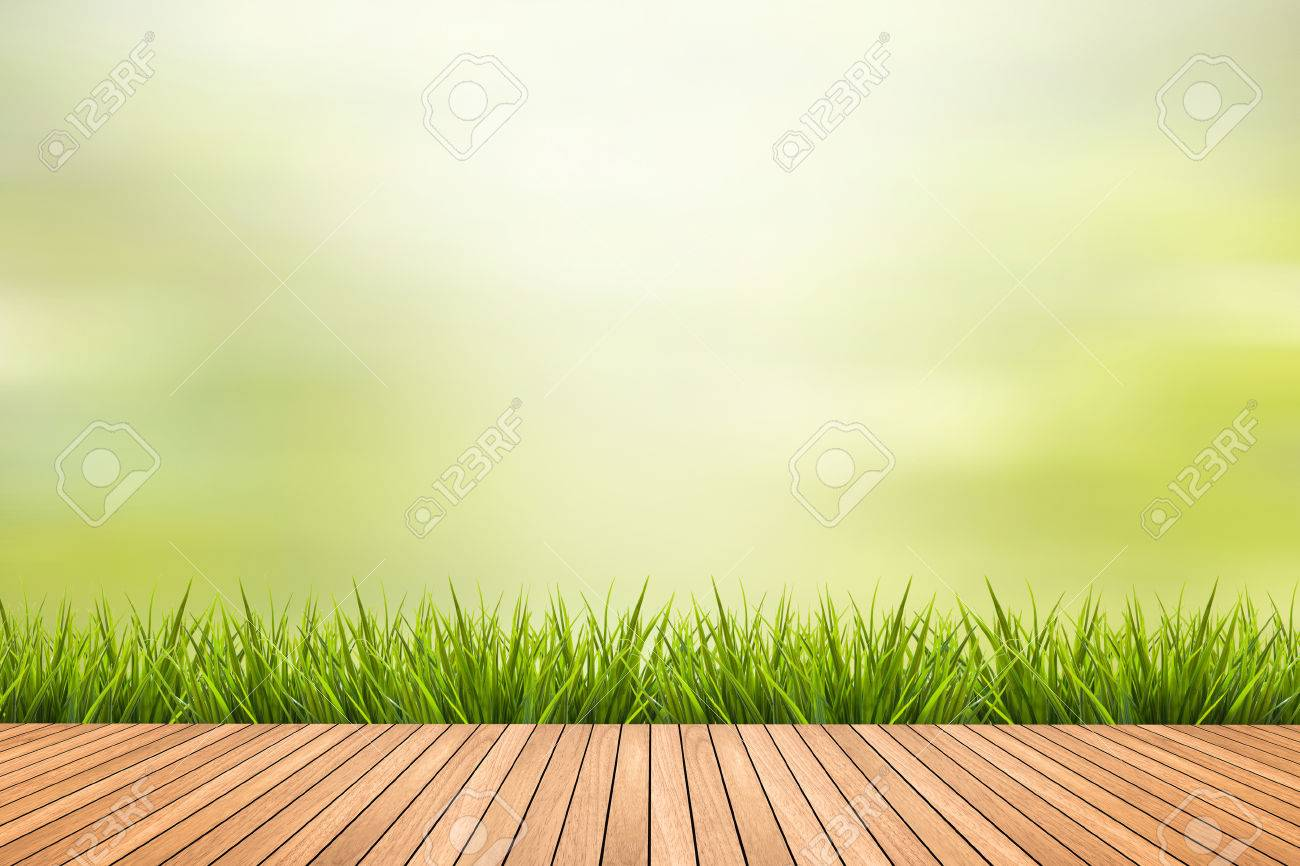 Fresh spring grass with green nature blurred background and brown wood floor - 43218519