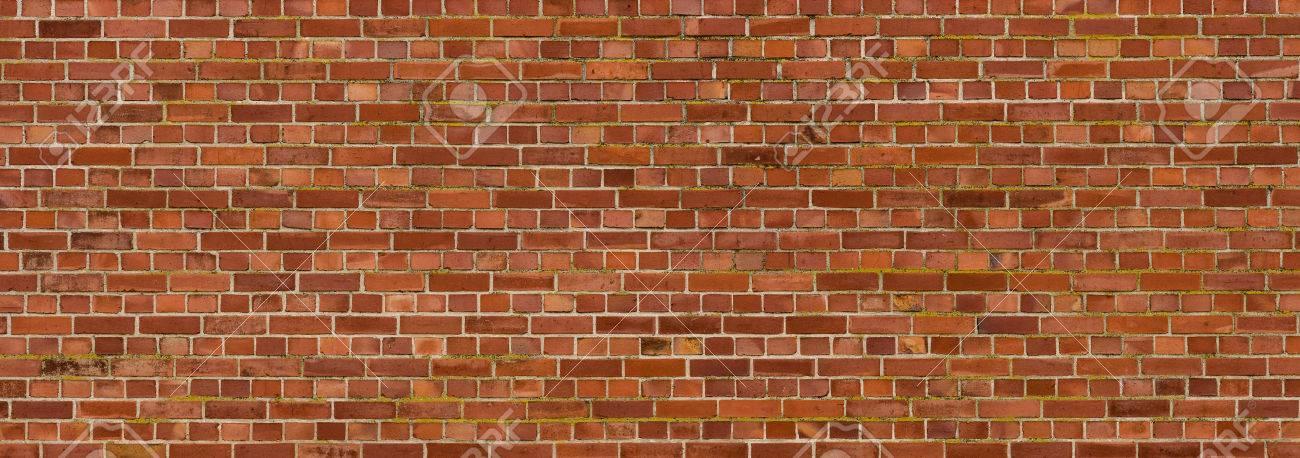 Old brick wall - 53771990