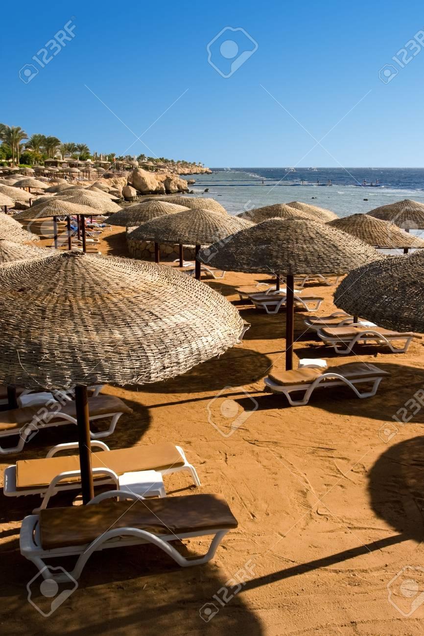 Sunchairs and umbrellas on the Beach Stock Photo - 3669052