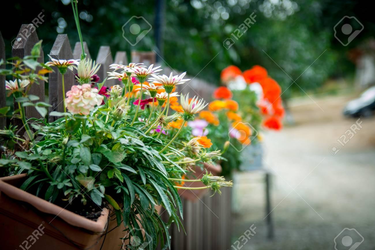 Le Pot De Fleurs S Accroche Sur Un Mur Ou Une Cloture En Bois