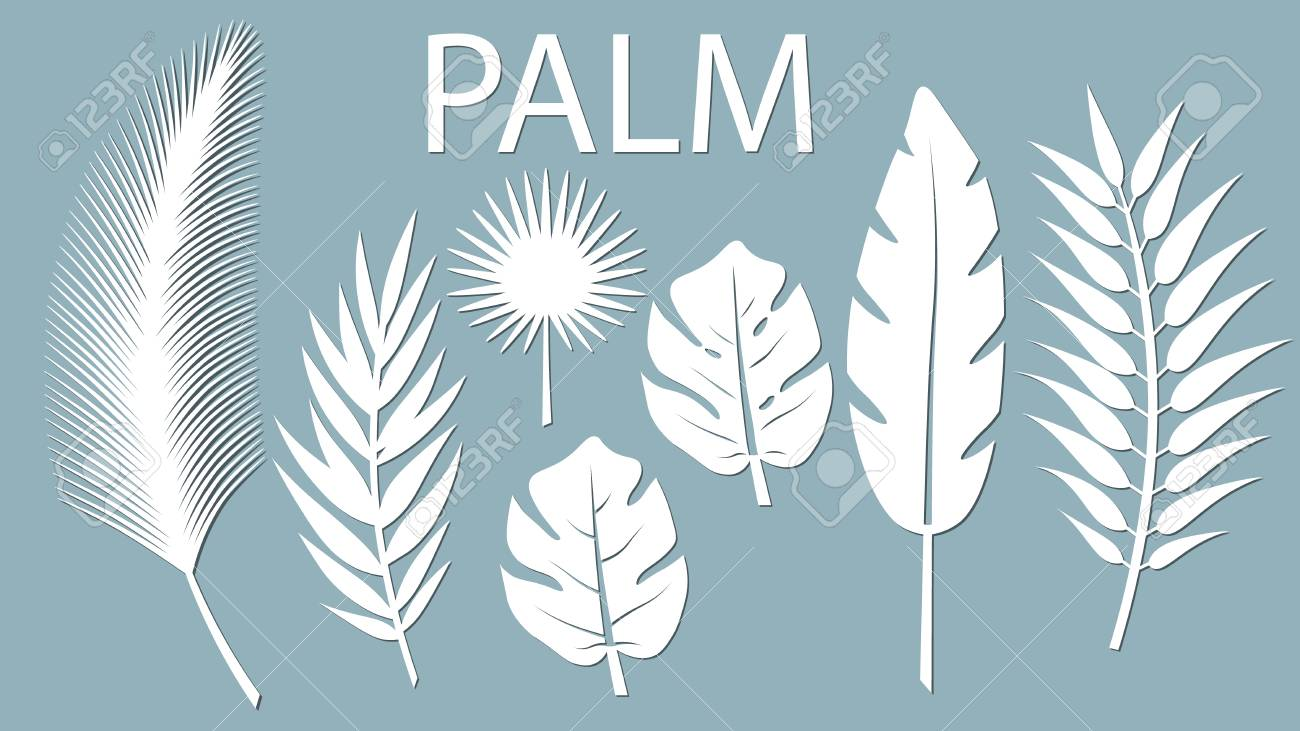 Set Template For Cutting Palm Leaves Pattern Laser Cut Vector