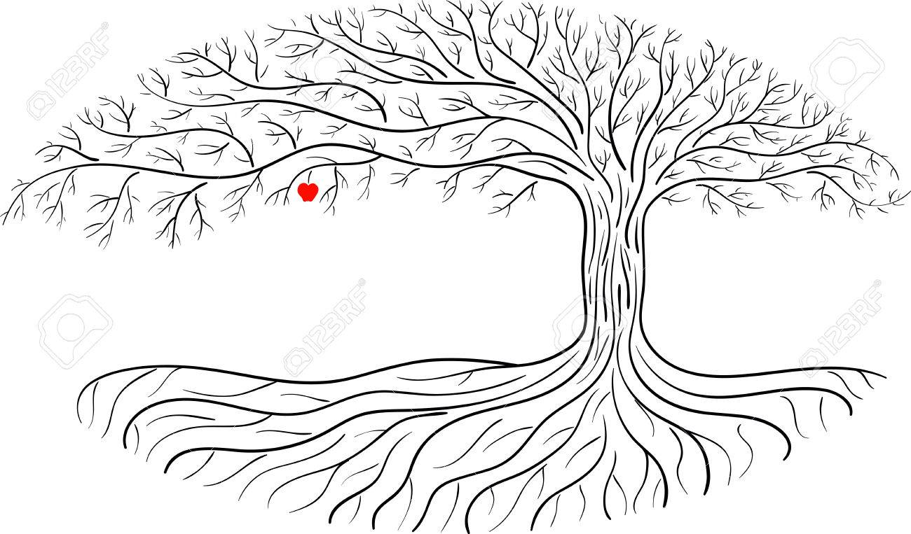 Druidic Apple Tree Oval Silhouette Black And White Tree Logo Royalty Free Cliparts Vectors And Stock Illustration Image 66468145