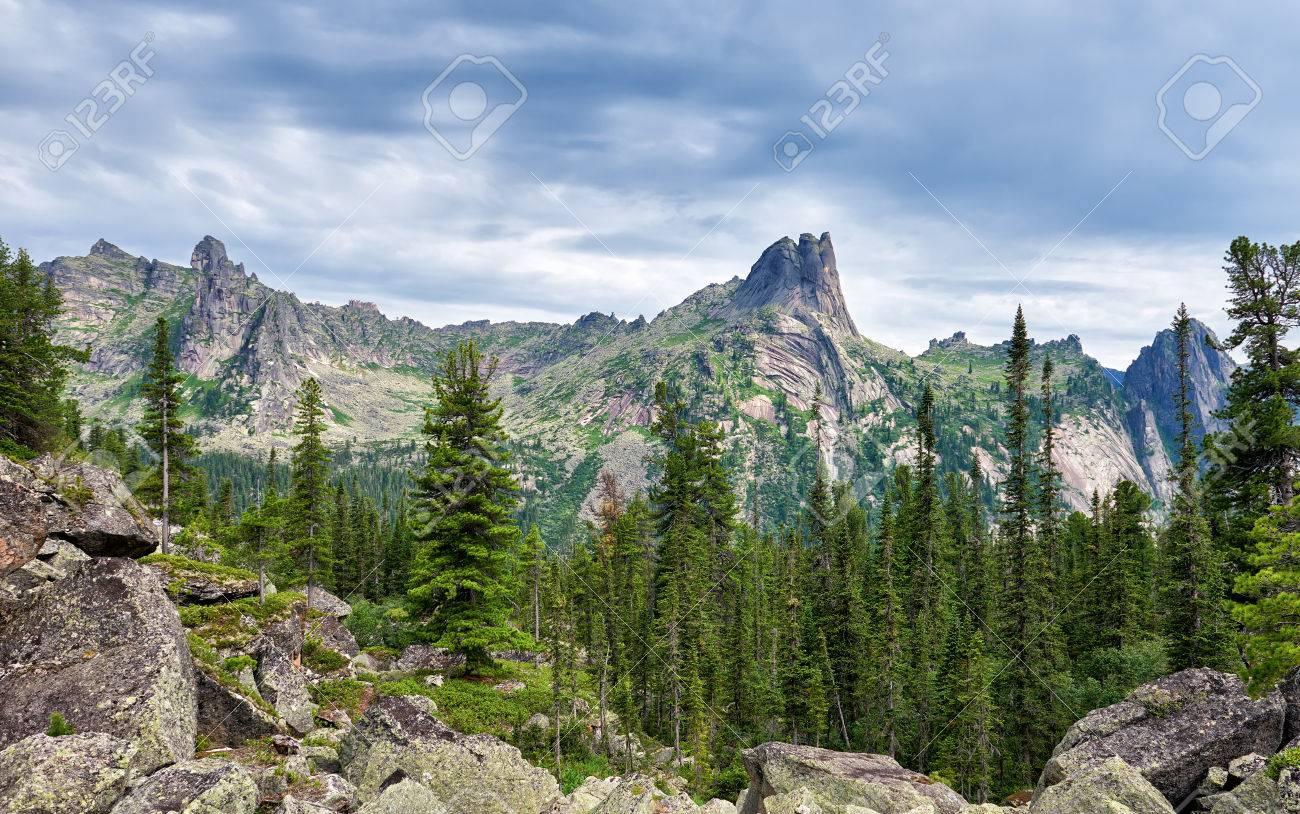 南シベリアの暗い針葉樹タイガ。...