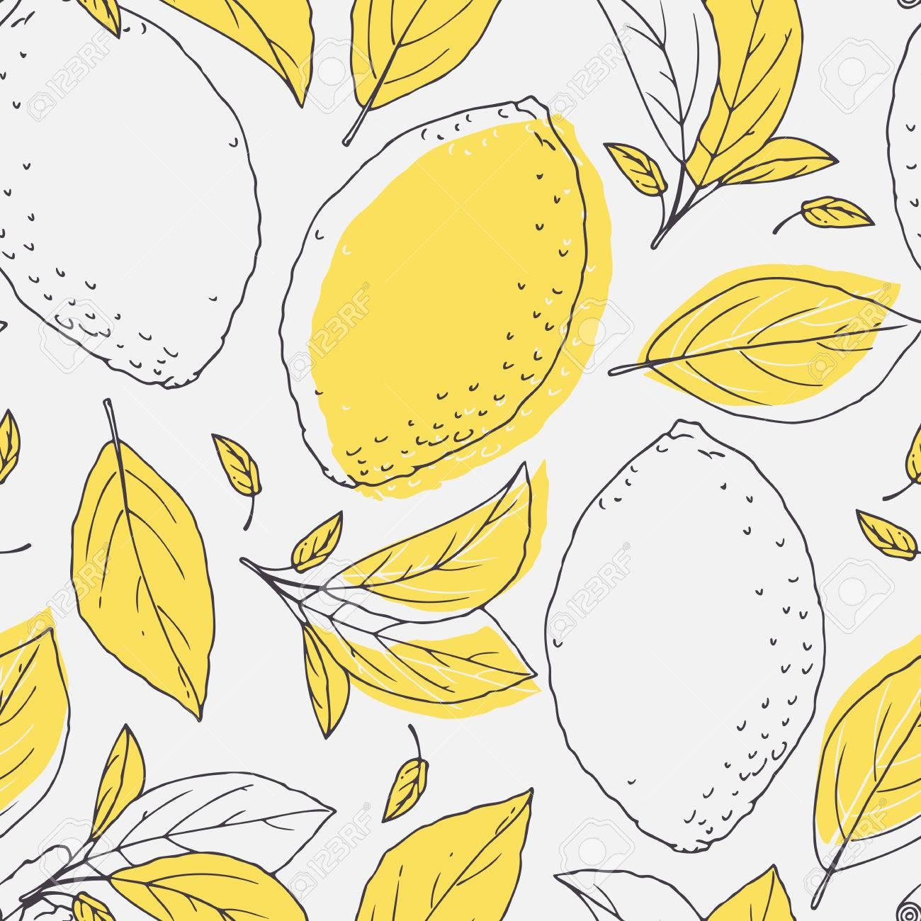 Esquema Patrón Transparente Con Dibujado A Mano Limón Y Hojas De ...