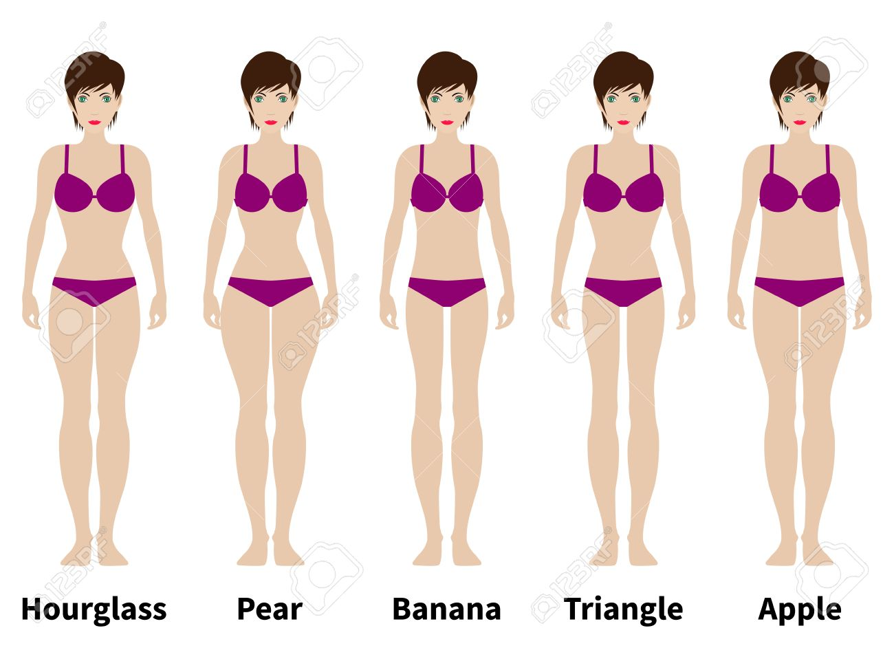 Vector illustration of five types of female figures. Women physique. Isolated on white background. A variation of the female body. - 62063302