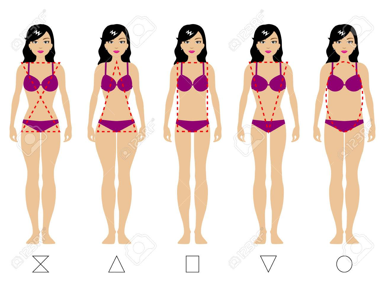 Vector Illustration Of Five Types Of The Female Body Kind Of