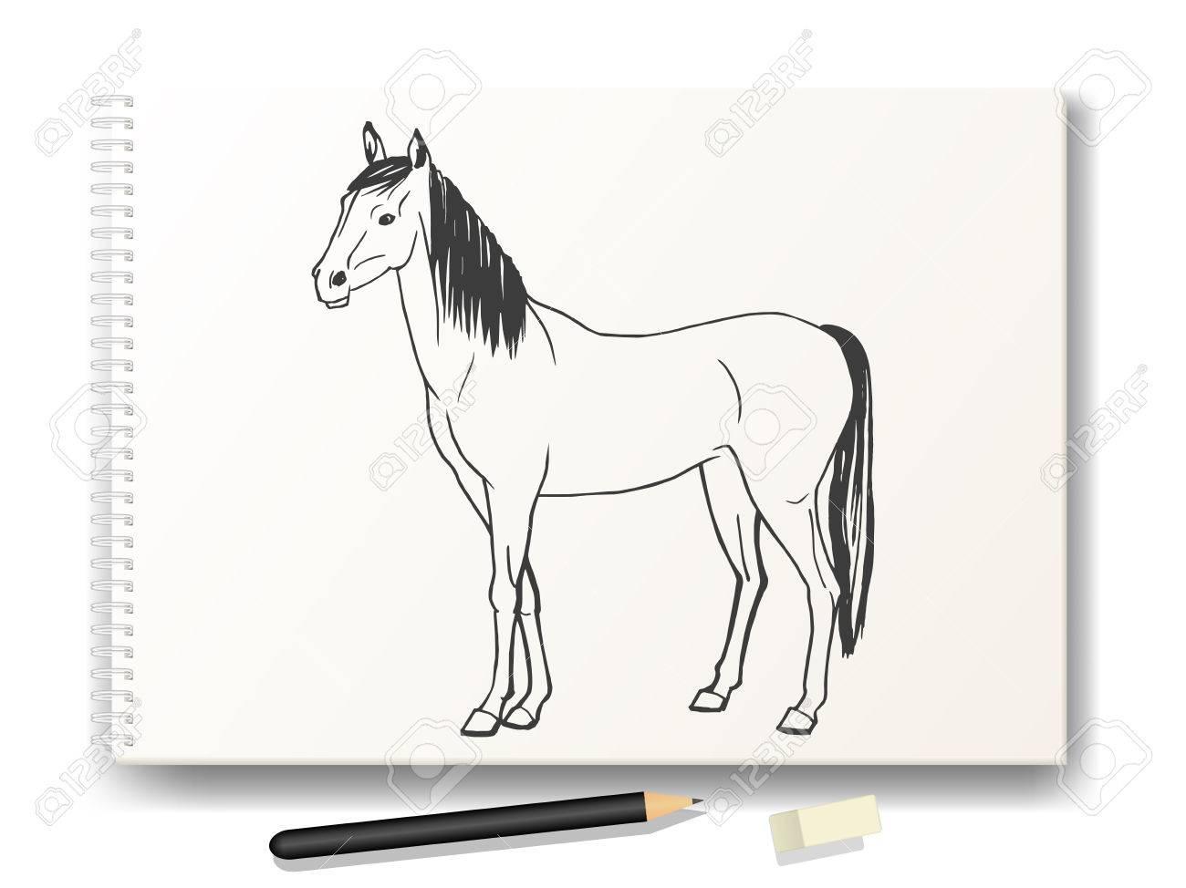 Vector Ilustración De Un Caballo Dibujado A Mano En Lápiz En La A4