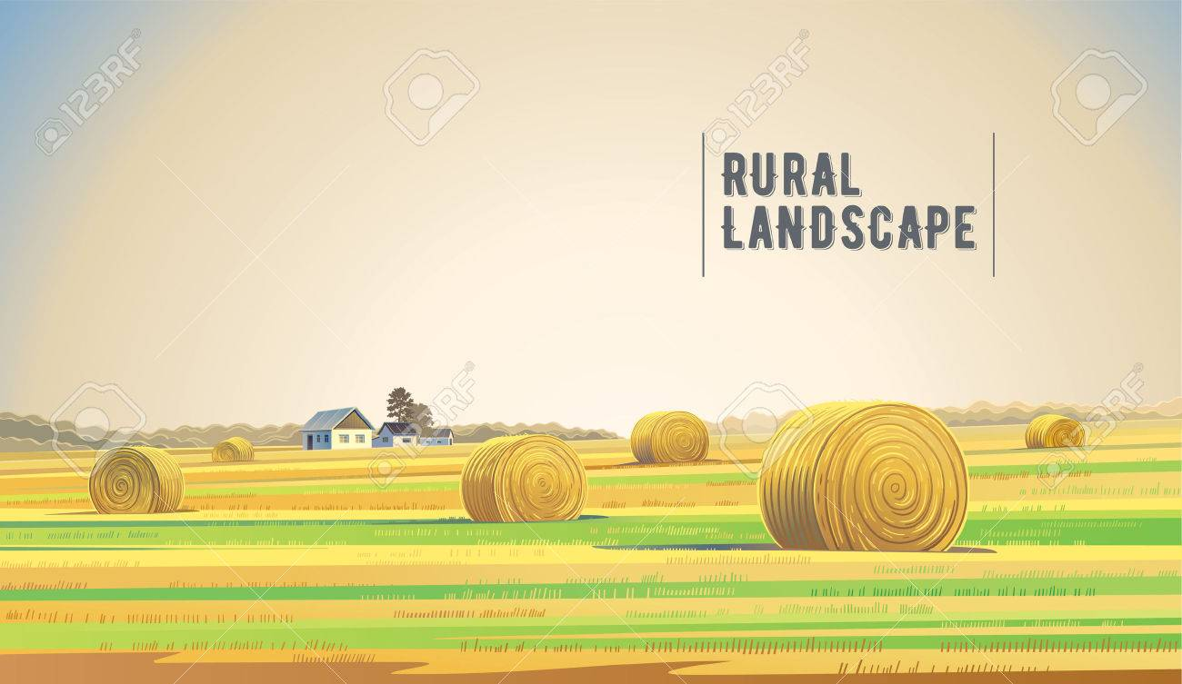 Countryside landscape with hay, field and village. - 53134302