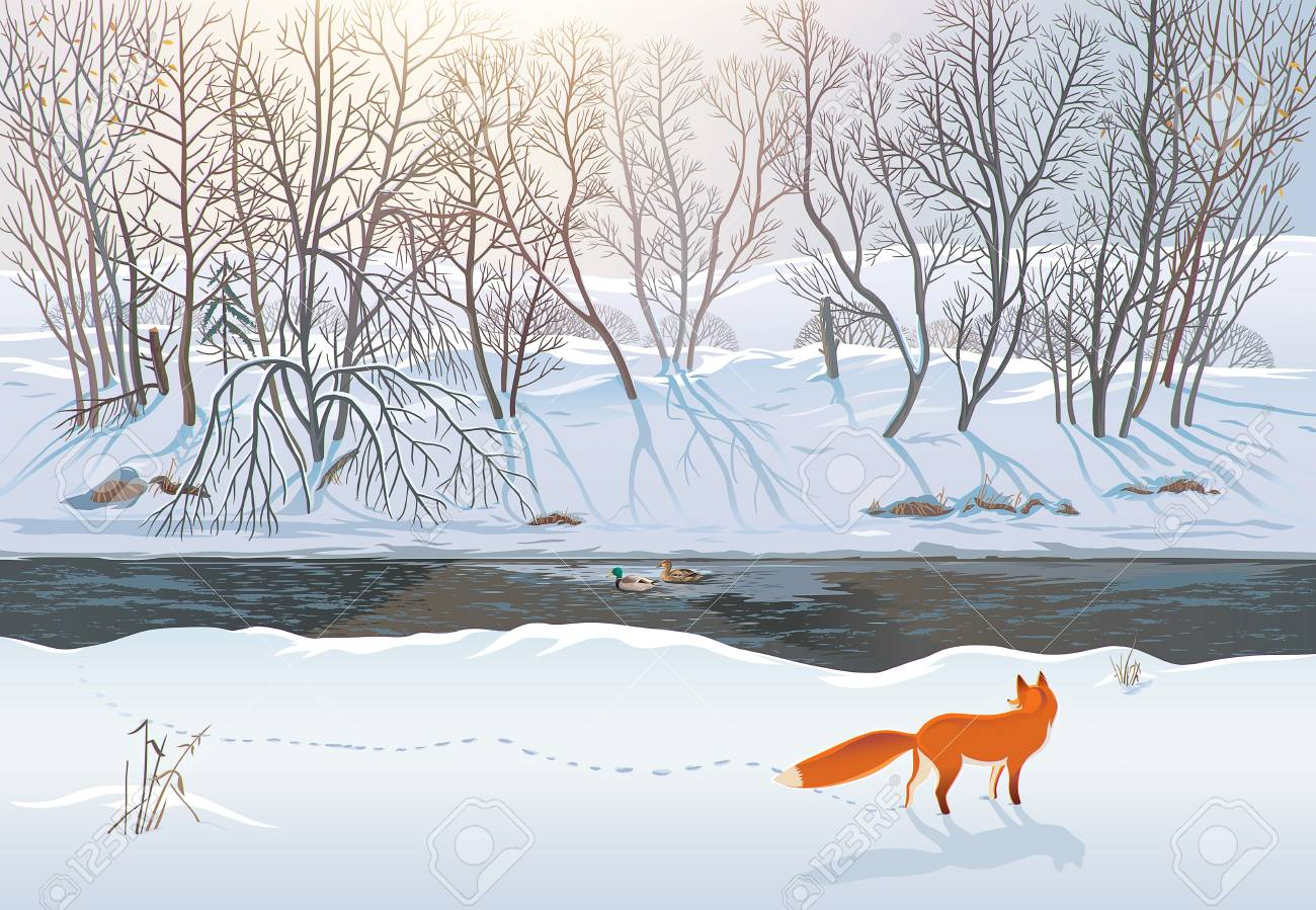 Winter forest with a fox that tries to hunt two ducks in the river. Raster illustration. - 94702349