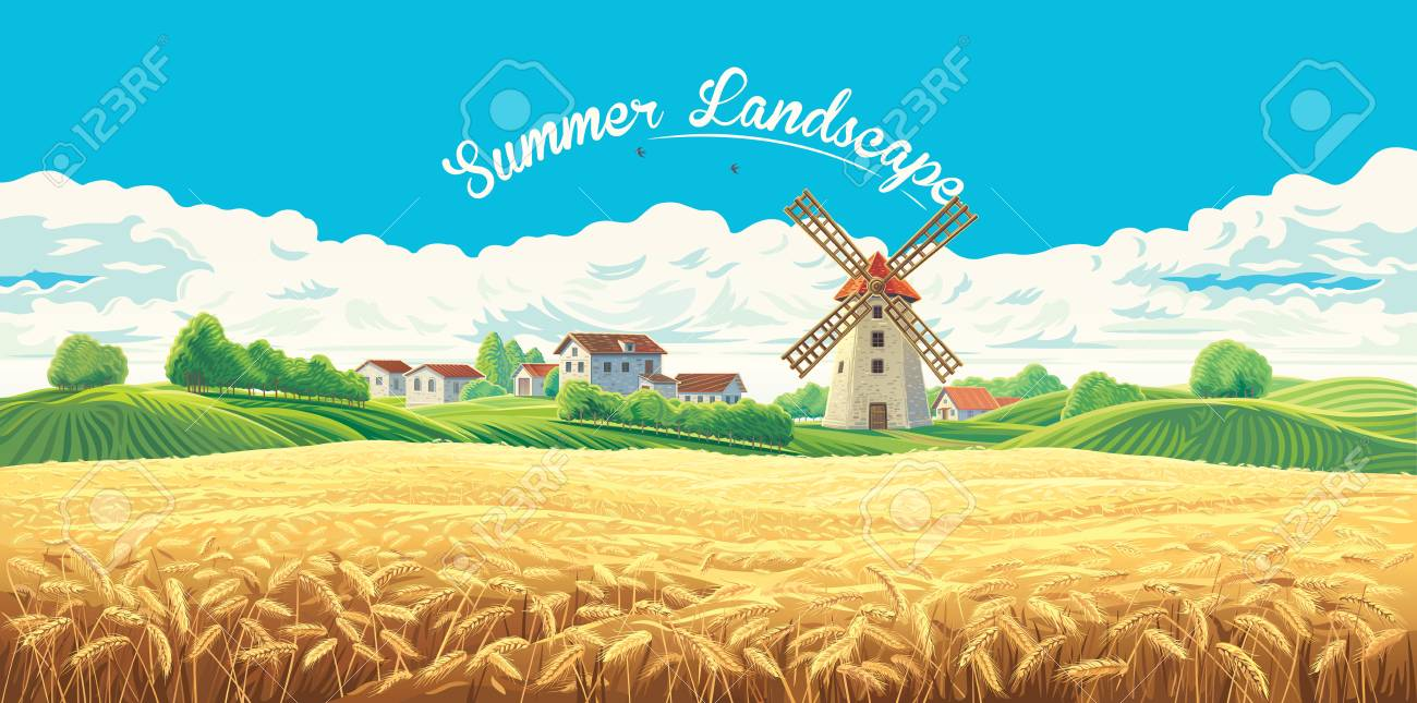 Rural summer landscape with the village and the mill and a large field of wheat. - 110087472