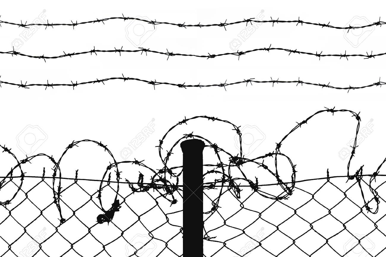 wired fence with five barbed wires Stock Photo - 2623816