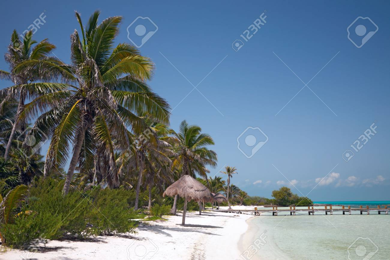 beach on the Isla Contoy, Mexico Stock Photo - 5392633