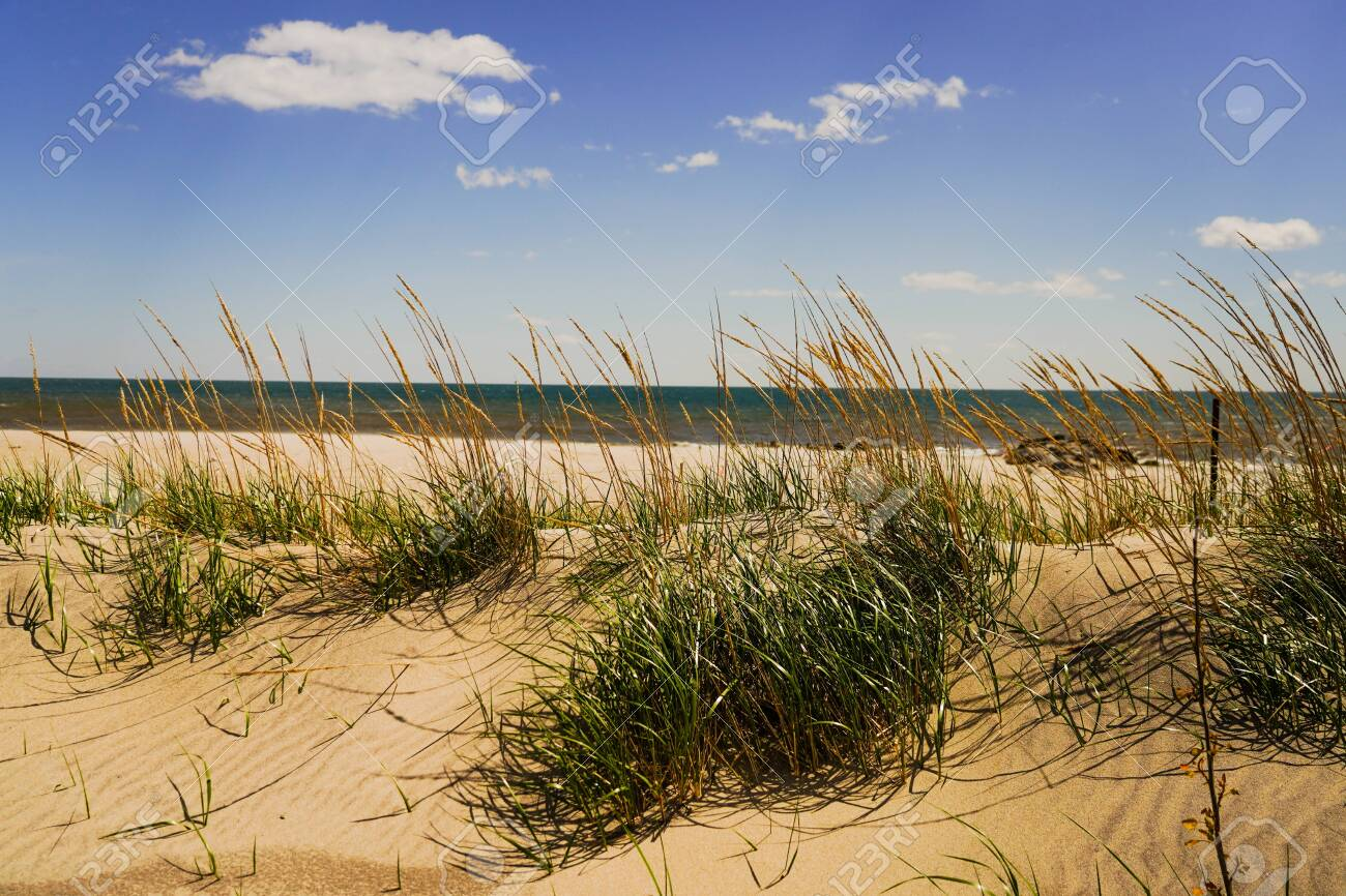 Dunes and waves at Atlantic's beach - 147877590