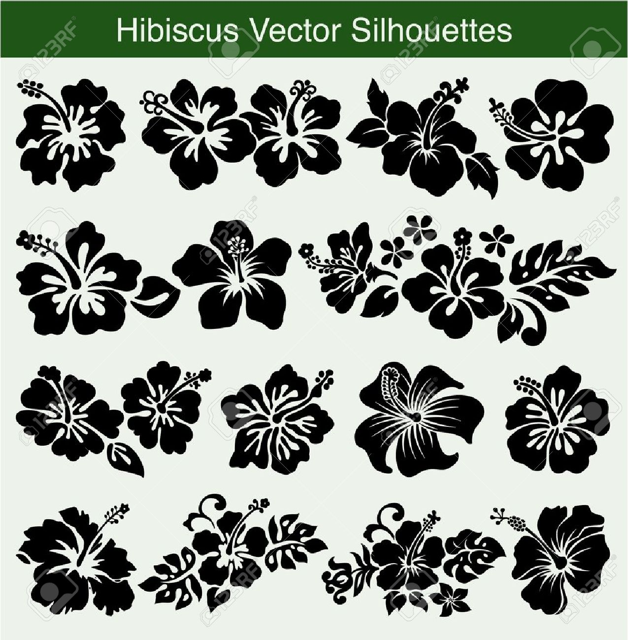 Hibiscus silhouettes Stock Vector - 16335027