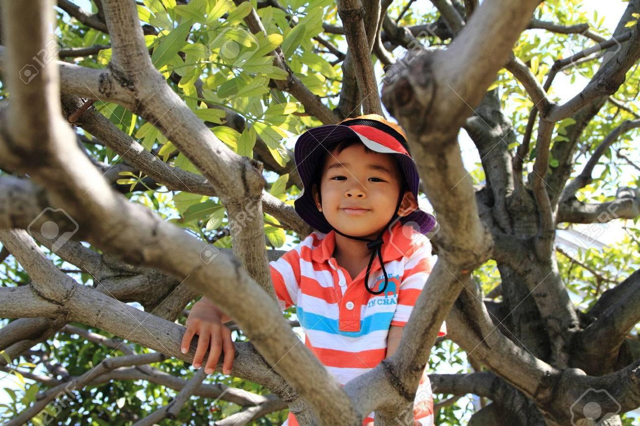 Boy climbing the tree - 31127974