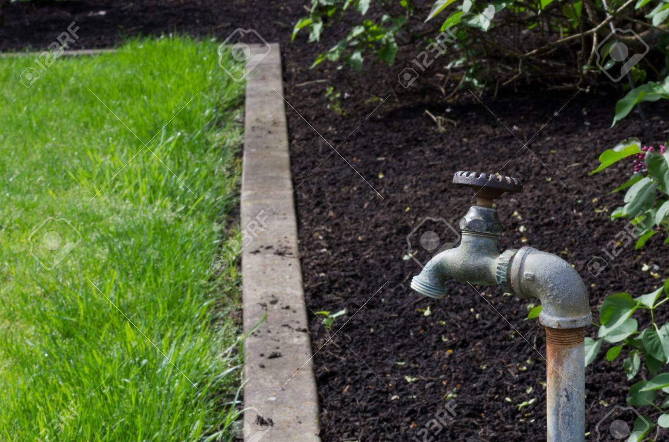 A Water Faucet Or Spigot In A Garden Stock Photo, Picture And ...