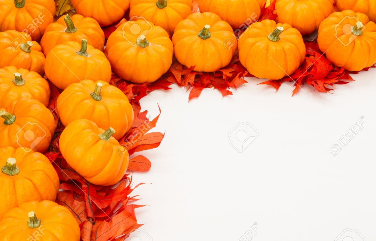 fall border of small pumpkins on red leaves stock photo picture and