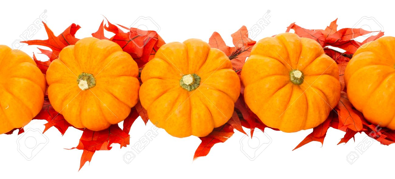 Fall Border Element With Small Pumpkins And Red Leaves Stock Photo Picture And Royalty Free Image Image 14608039