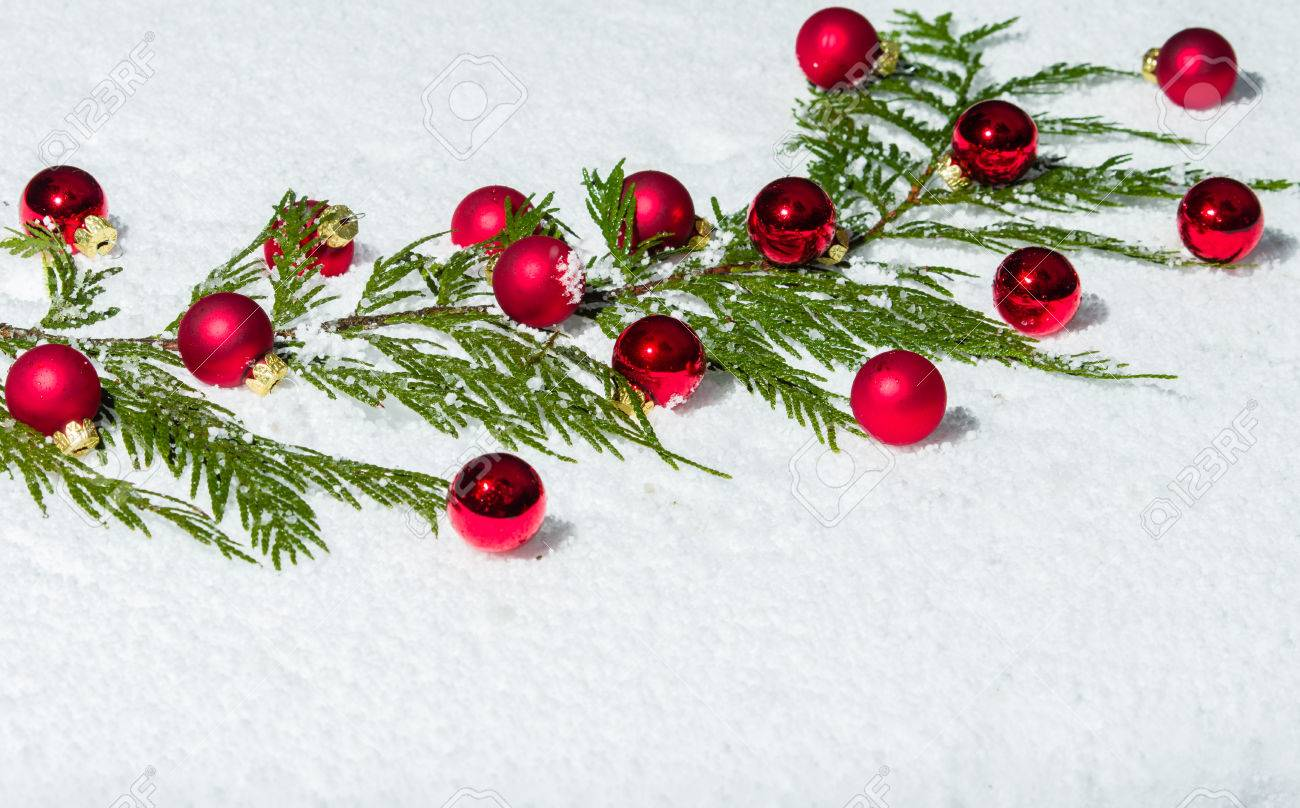 Evergreen Bough In The Snow With Red Christmas Ornaments Stock ...