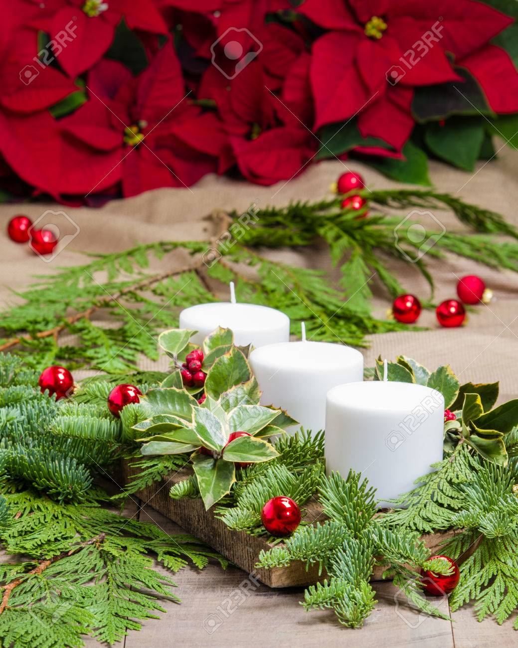 An Evergreen Christmas.White Candles In An Evergreen Christmas Arrangement
