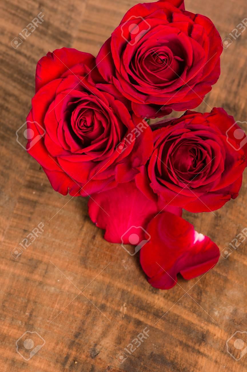 Aérea De Un Grupo De Flores Rosas Rojas Fotos Retratos Imágenes Y