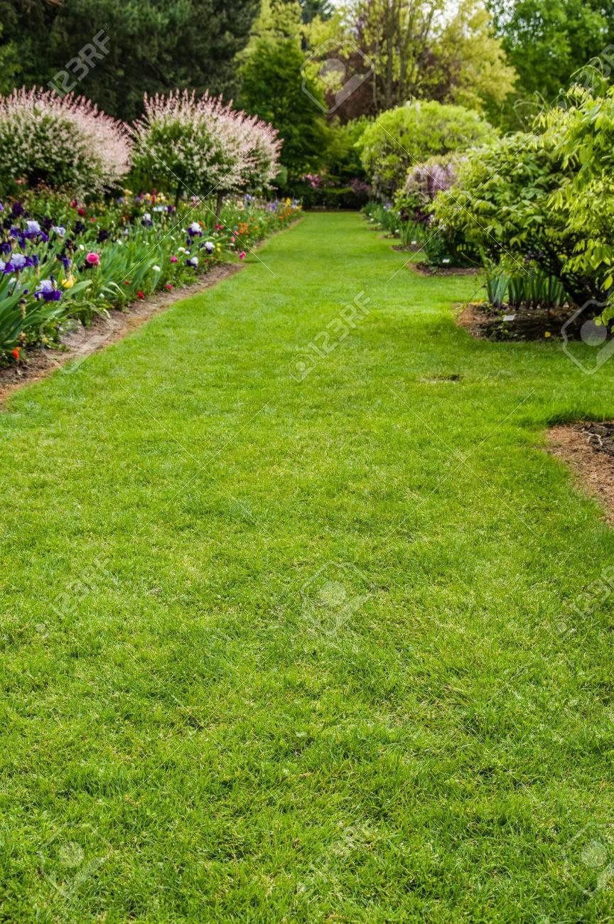 Grüner Rasen Und Blühende Sträucher In Einem Gepflegten Garten