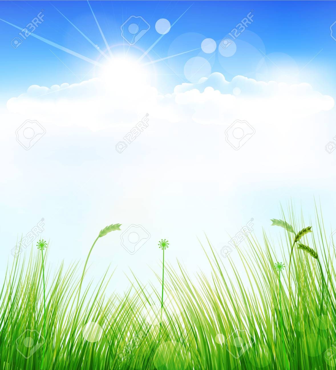 vector background with a blue sky, grass and sun Stock Vector - 16420556