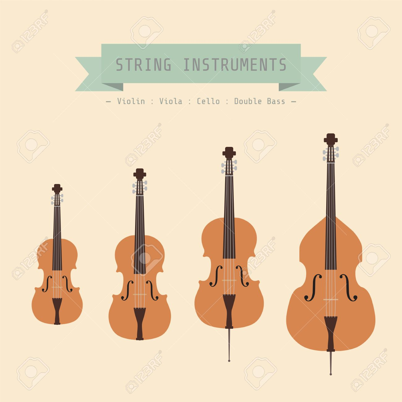 Musical Instrument String Violin Viola Cello And Double Bass