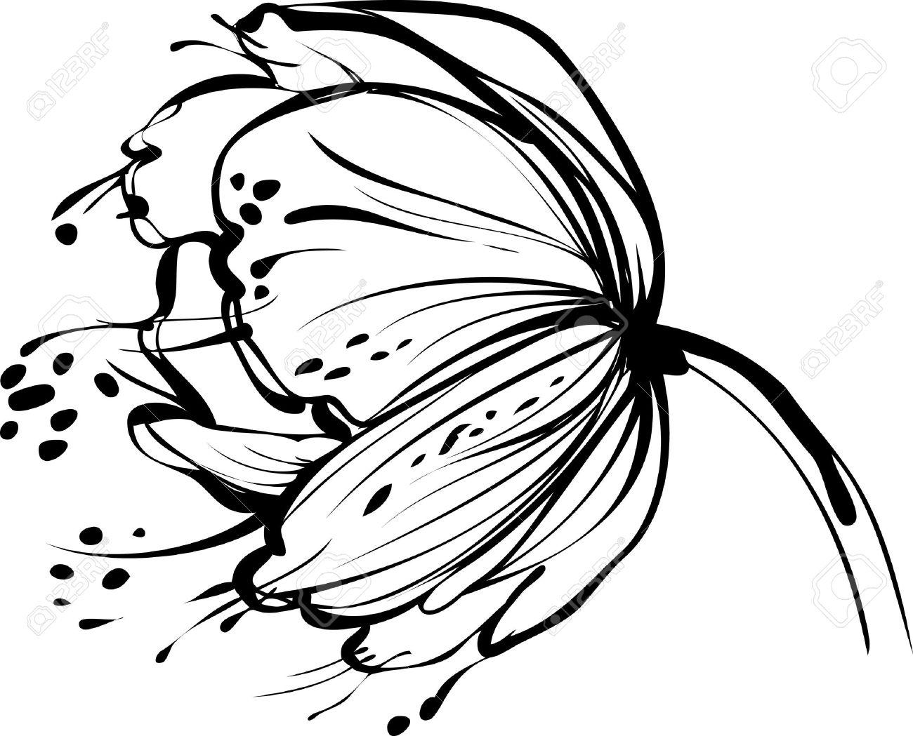 dessin fleur une image de la nature blanc bourgeon floral Illustration