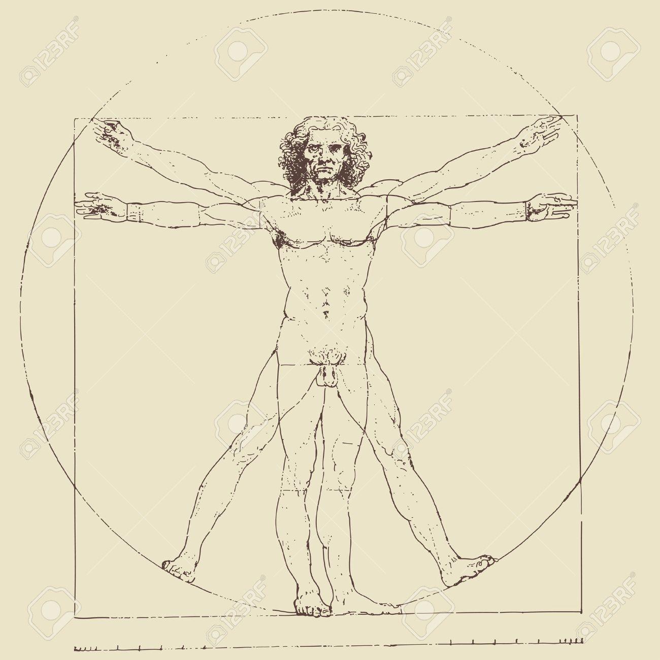 Leonardo Da Vincis Vitruvian Man Vector Drawing Royalty Free