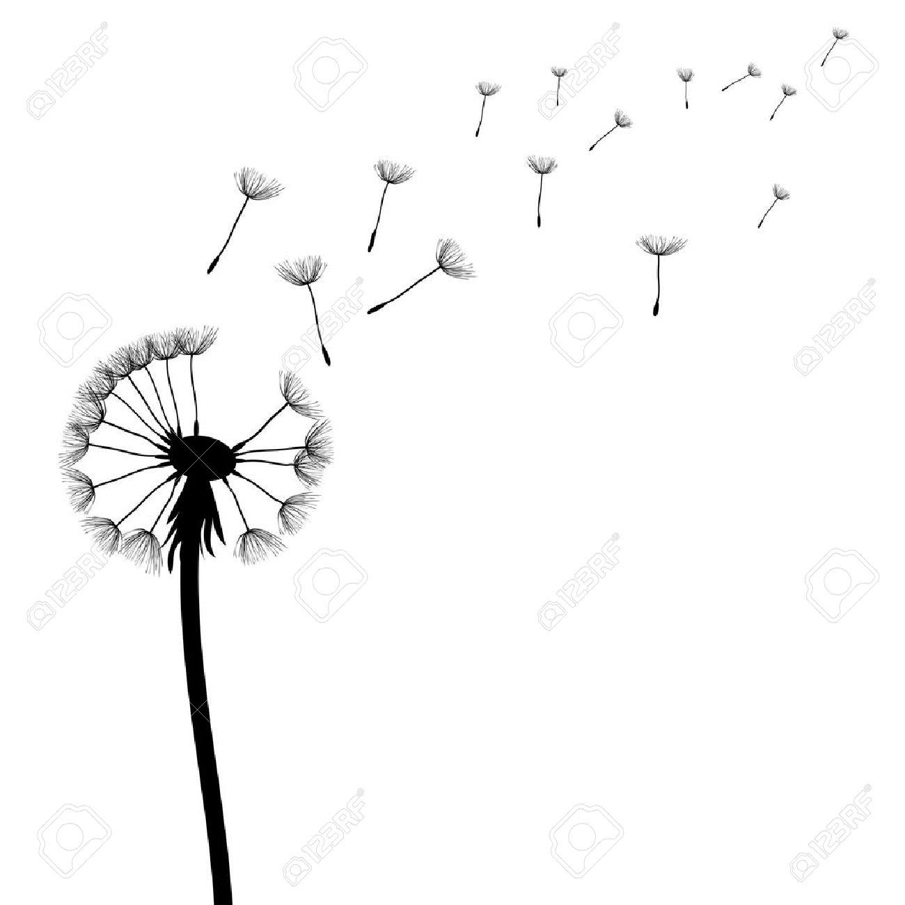 vector dandelion on the wind Stock Vector - 9147953