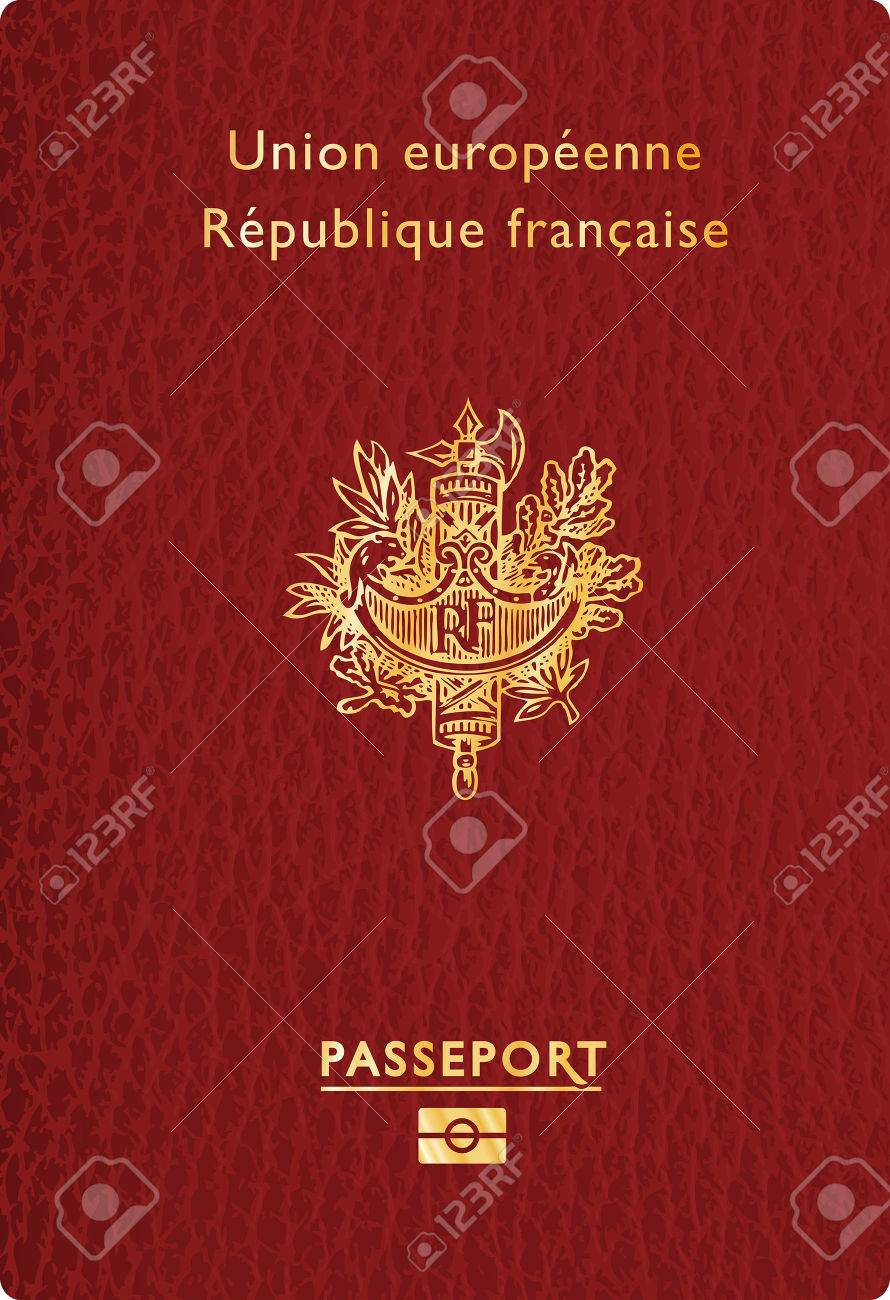 vector illustration of french leather passport - 35818267