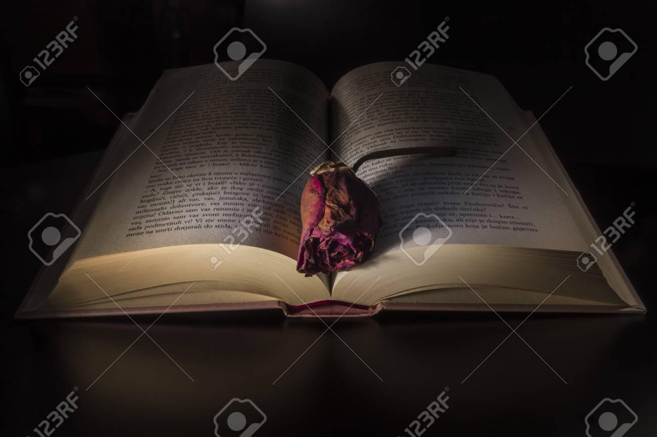 Immagini Stock Libro Con Una Rosa Su Sfondo Nero Image 85808903