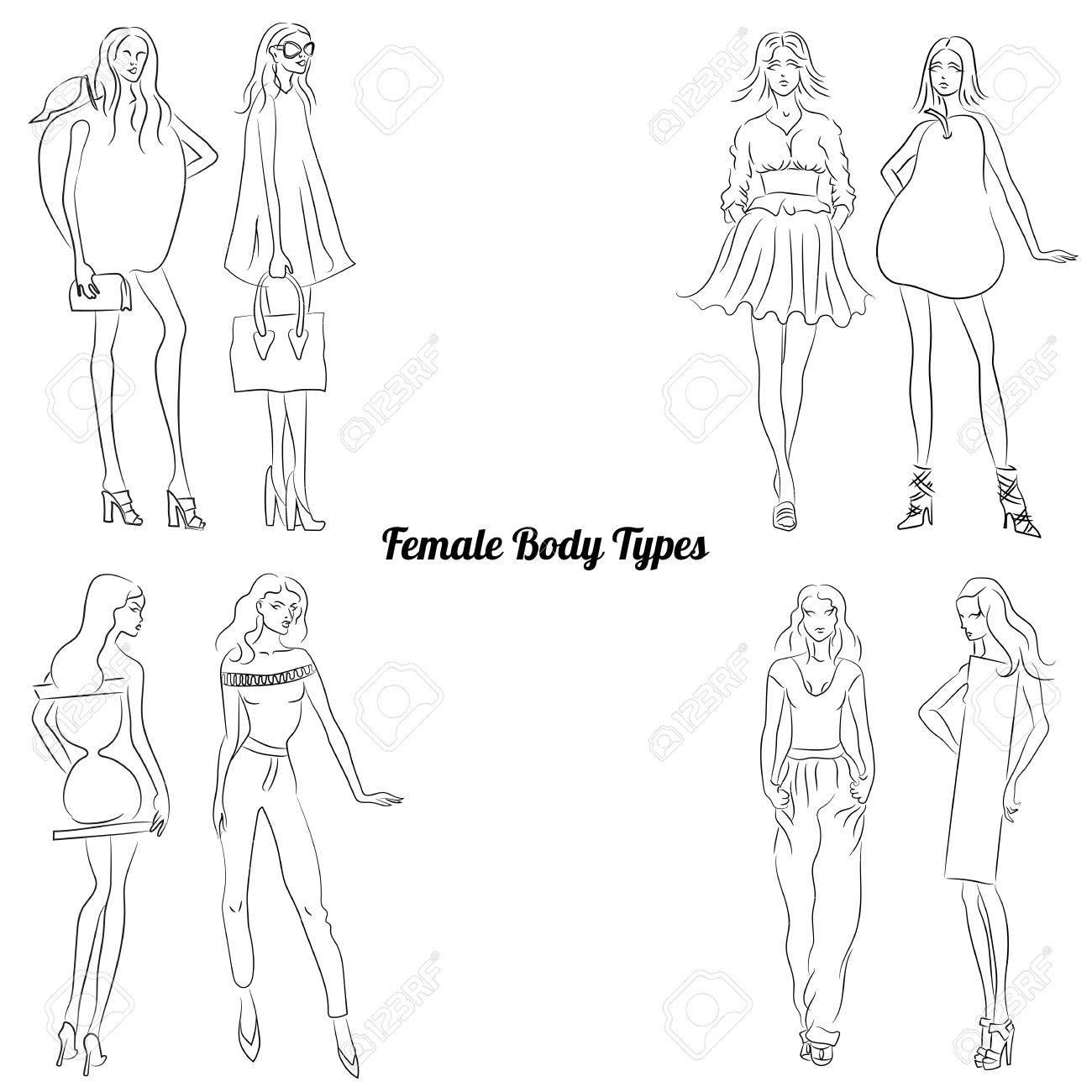 Weiblicher Körper-Typen Und Körperformen Lizenzfrei Nutzbare ...