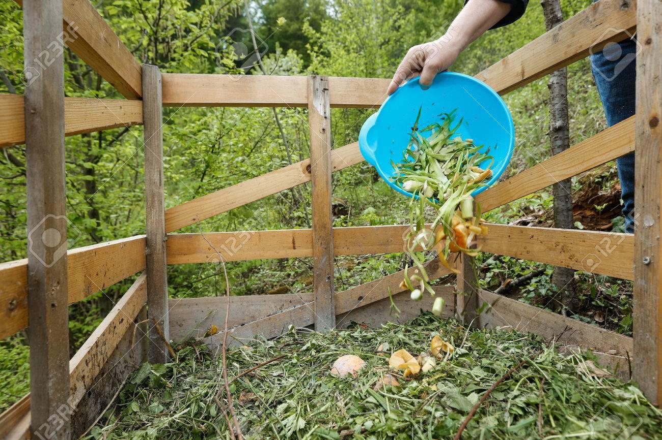 Organic kitchen waste being thrown on a homemade compost in the garden. Natural gardening,