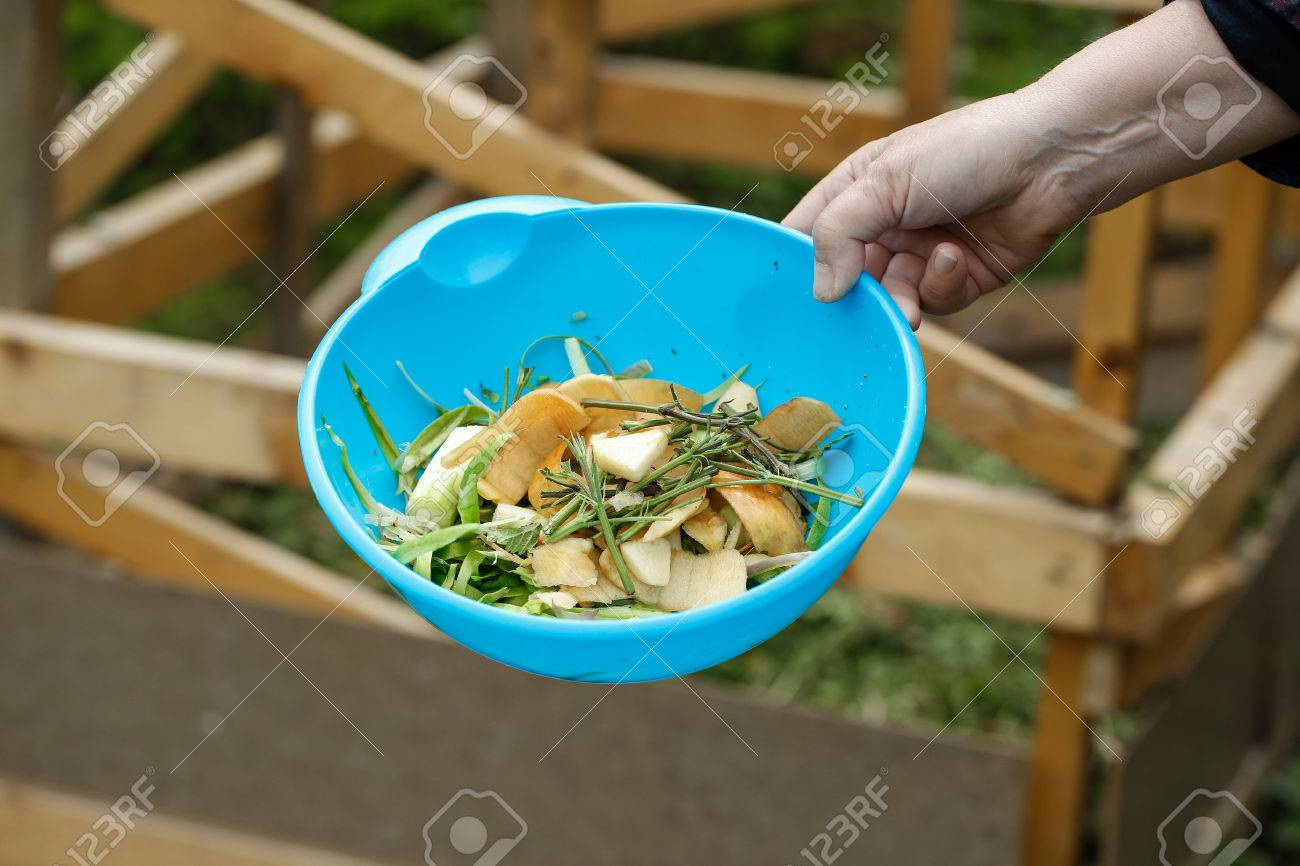 Organic Kitchen Waste Gathered For Composting In The Garden... Stock ...