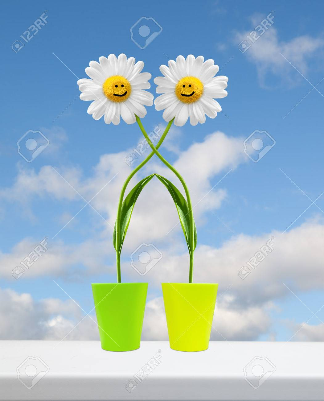 Two embracing flowers on the window sill Stock Photo - 24929705