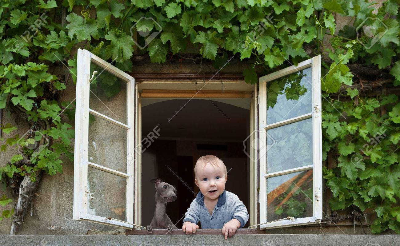 baby and dog looking out the window Stock Photo - 33945504