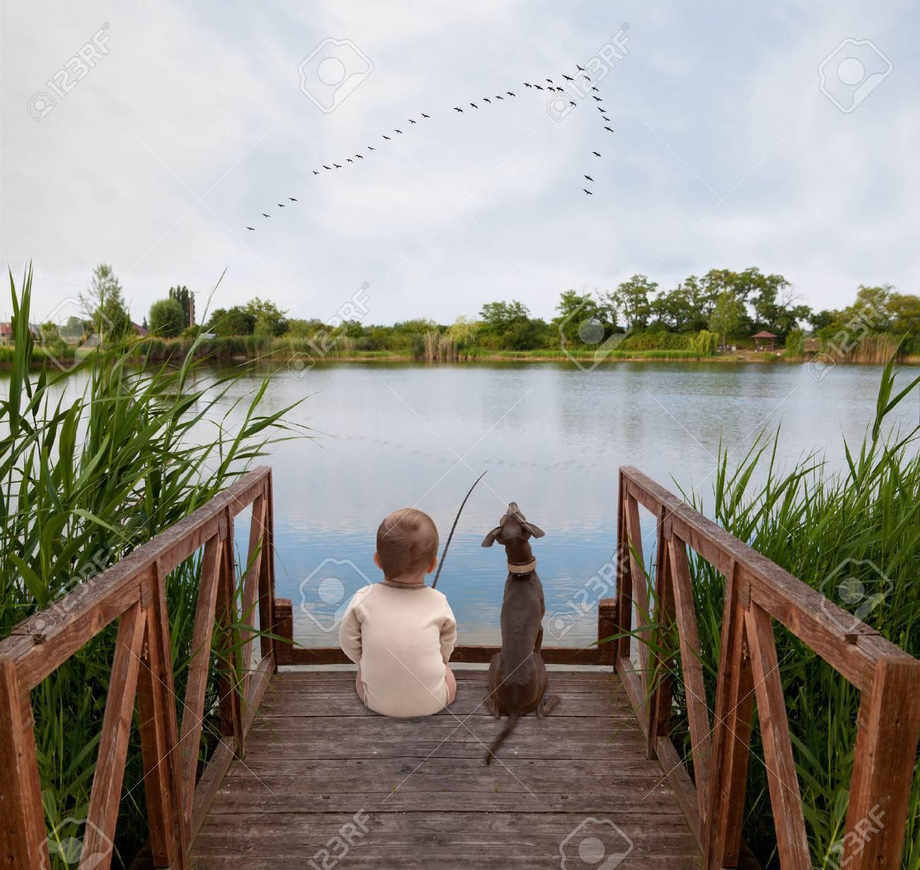 boy and his dog fish on the shore of Lake Stock Photo - 38924536