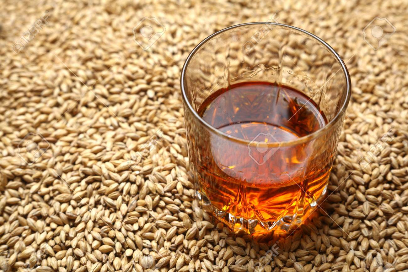 Tumbler glass with whiskey standing on barley malt grains - 58287929