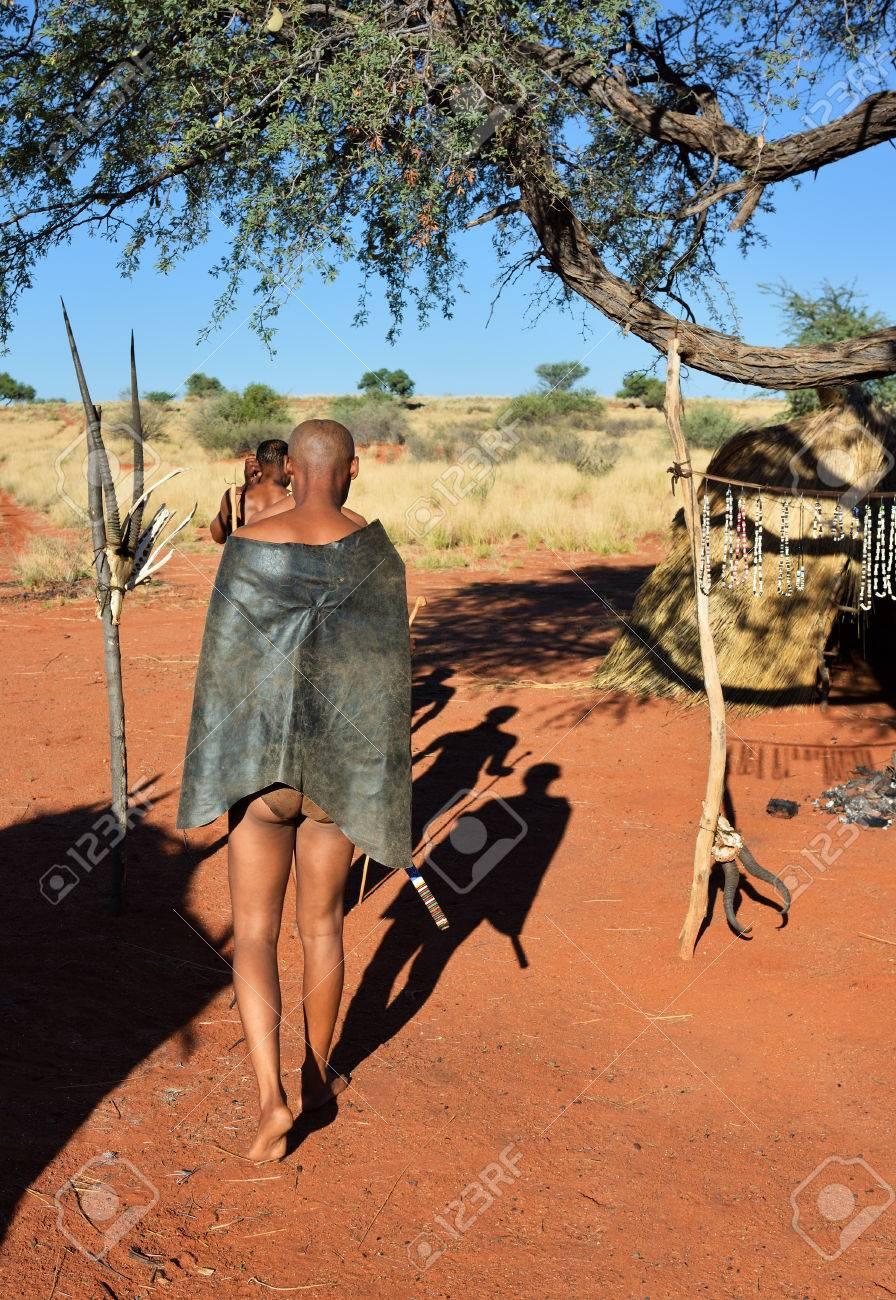 カラハリ砂漠、ナミビア - 2016 ...