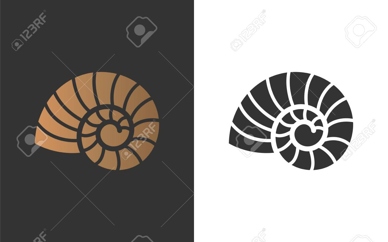 Vector illustration with seashell nautilus. Object for your logo / card / flyer. - 119004072