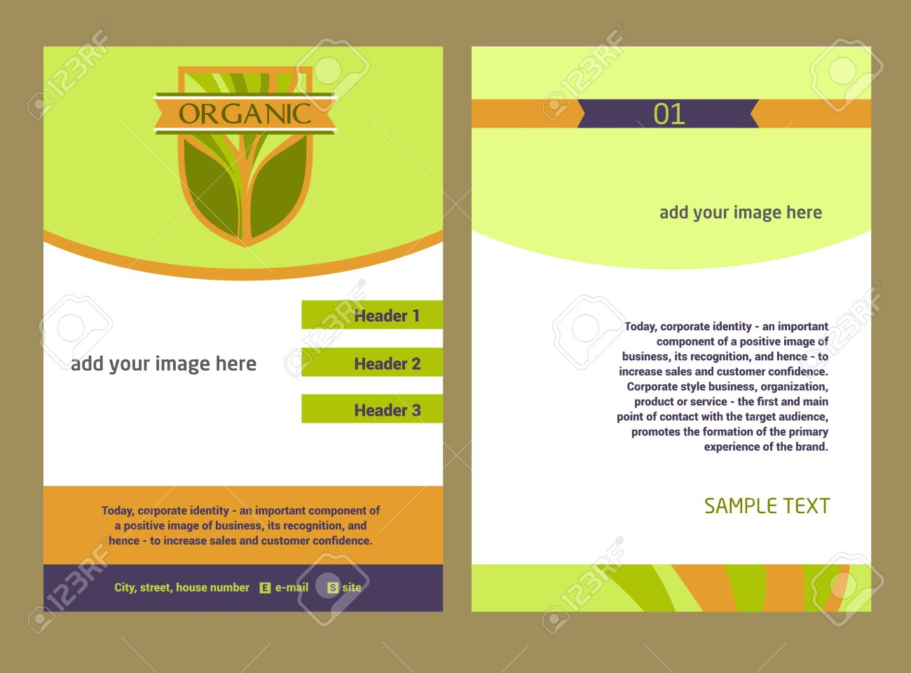 flyer format graphic designer resume template vector 3 multiuse s ...