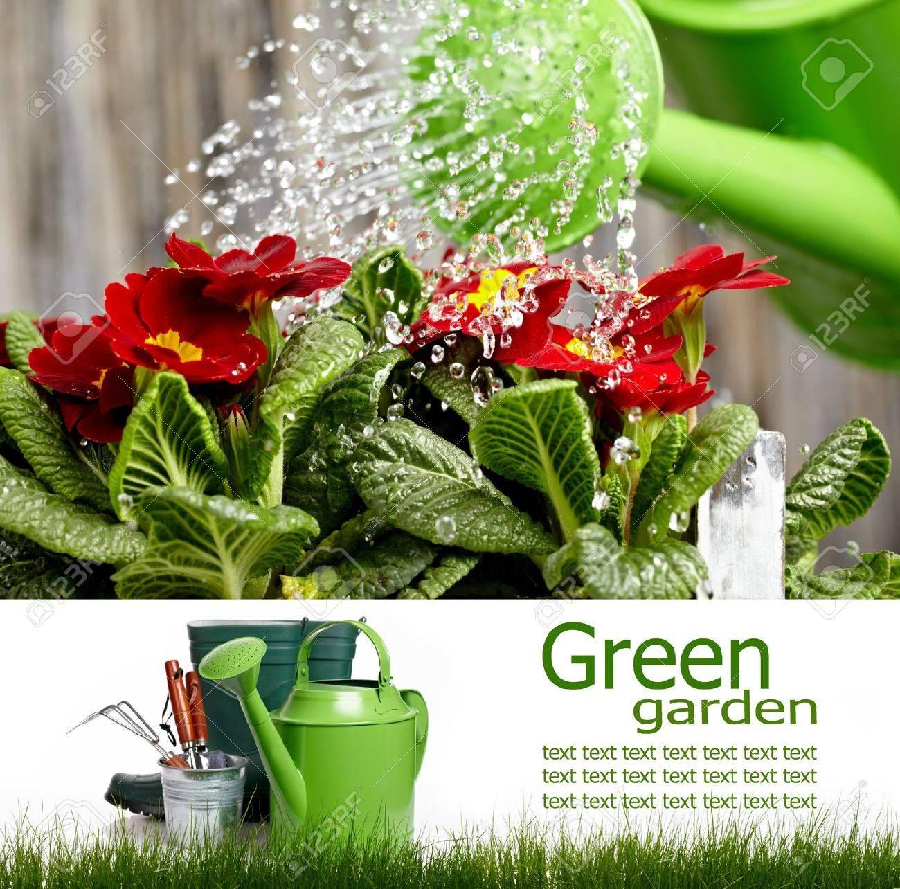 Gardening  board concept Stock Photo - 12368103