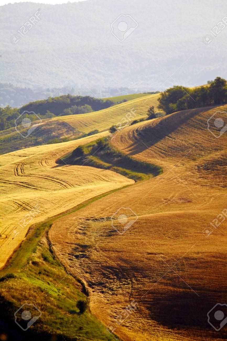 Tuscany hills Stock Photo - 17127685