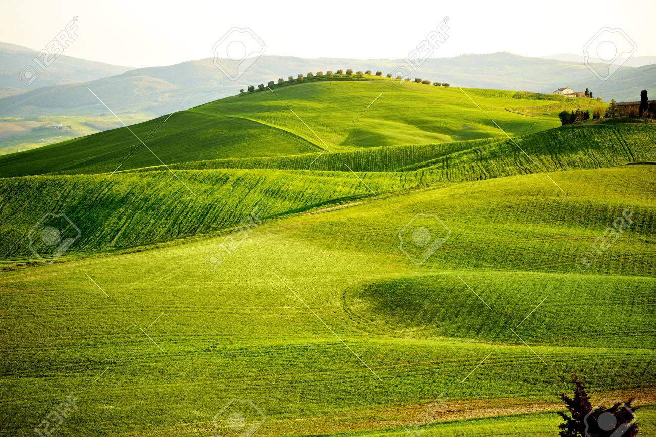Countryside, San Quirico d`Orcia , Tuscany, Italy Stock Photo - 19841992