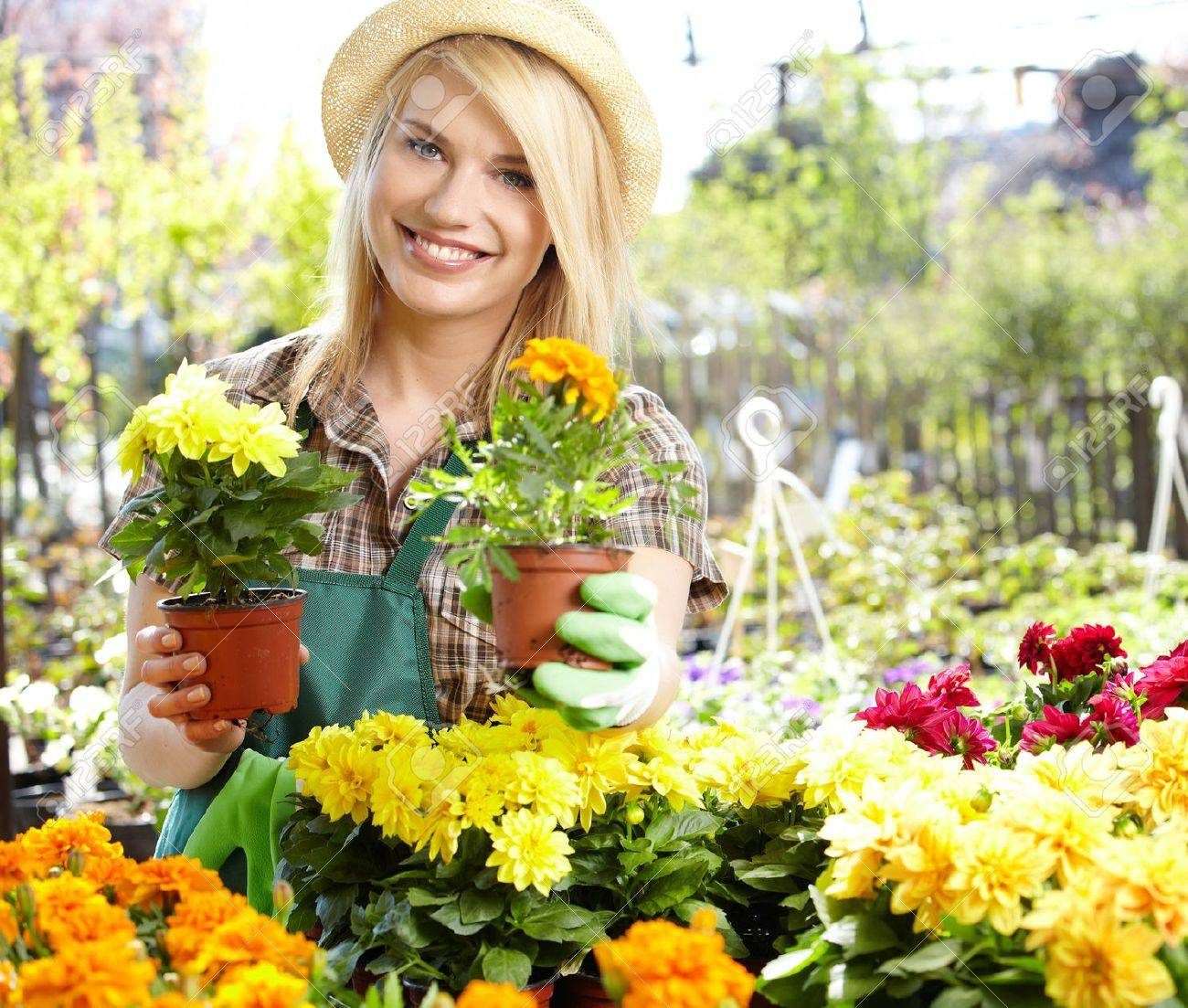 Florists woman working with flowers at a greenhouse Stock Photo - 20864610