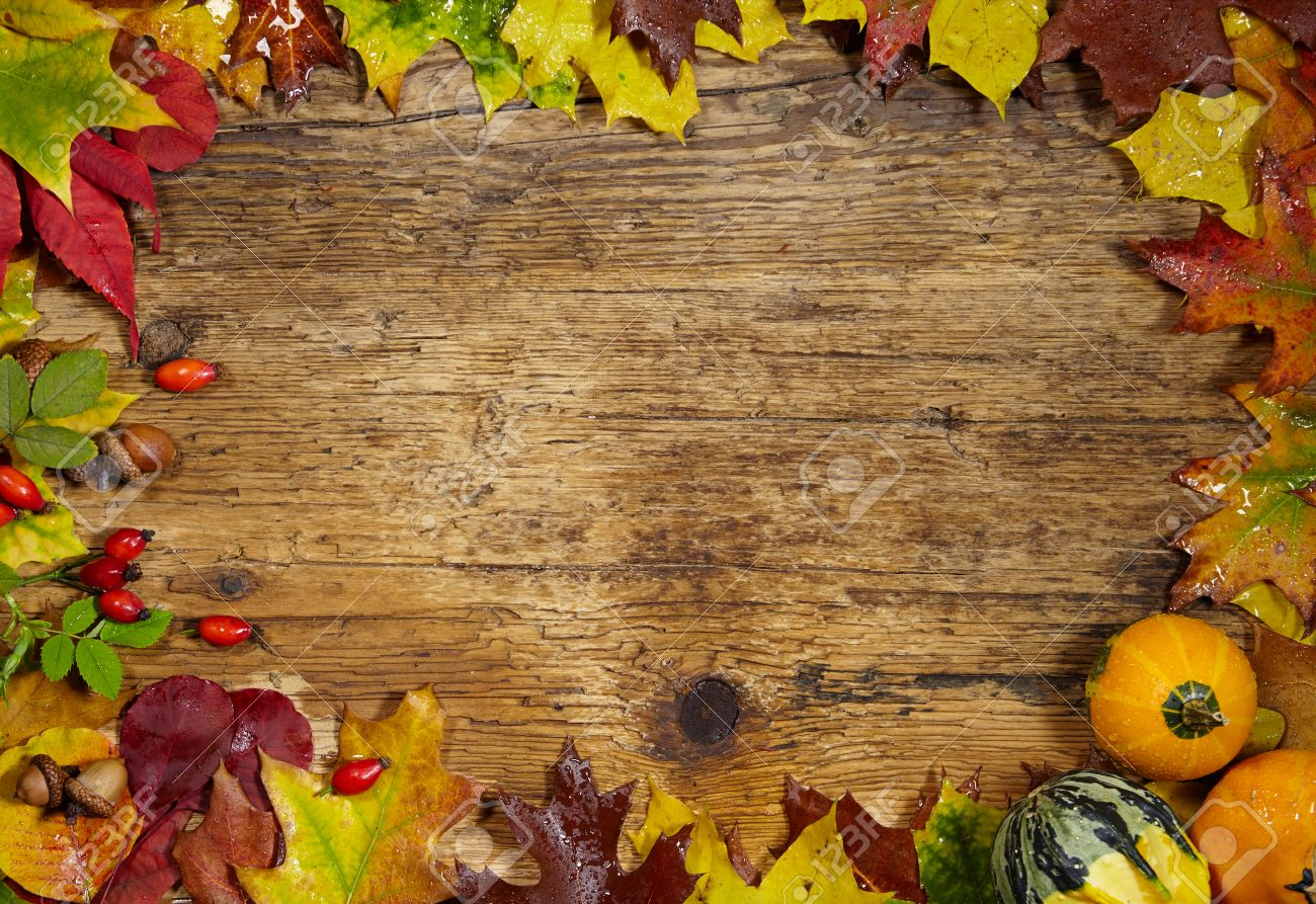 thanksgiving autumn fall background with red brown and yellow